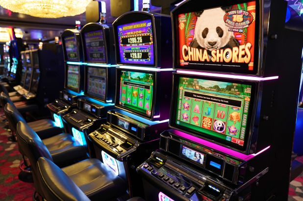 Ways Develop Much Better Casino With The Aid Of Your Canine
